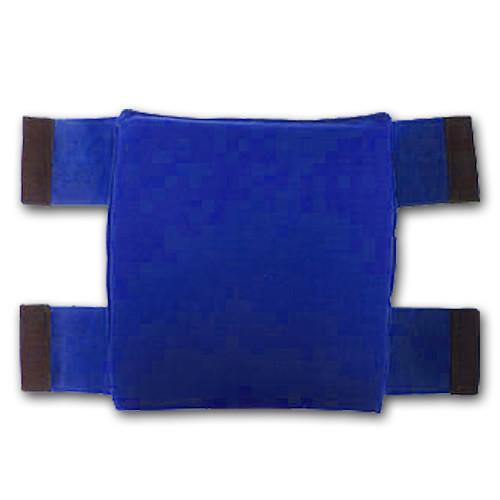 Strong 303 Lumbar Support - Blue